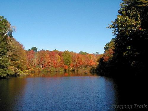 Hewitt/Gallup Pond in autumn